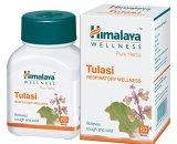 himalaya tulasi Himalaya Wellness Pure Herbs Tulasi Respiratory Wellness - 60 Tablets