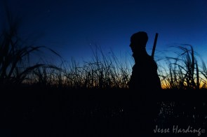 Hunthing Silhouette