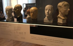 Phrenological busts repurposed to show the failings of such methodology (author photo)