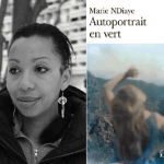 The Unknowable Self in Women's Photobiography:  The Example of Marie NDiaye