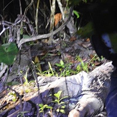 Menores matam adolescente de 13 anos com golpes de enxada e enterram corpo em matagal