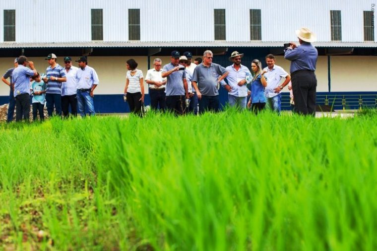 Missão Pró Grãos busca em Rondônia técnicas para implantar agronegócio forte no Acre