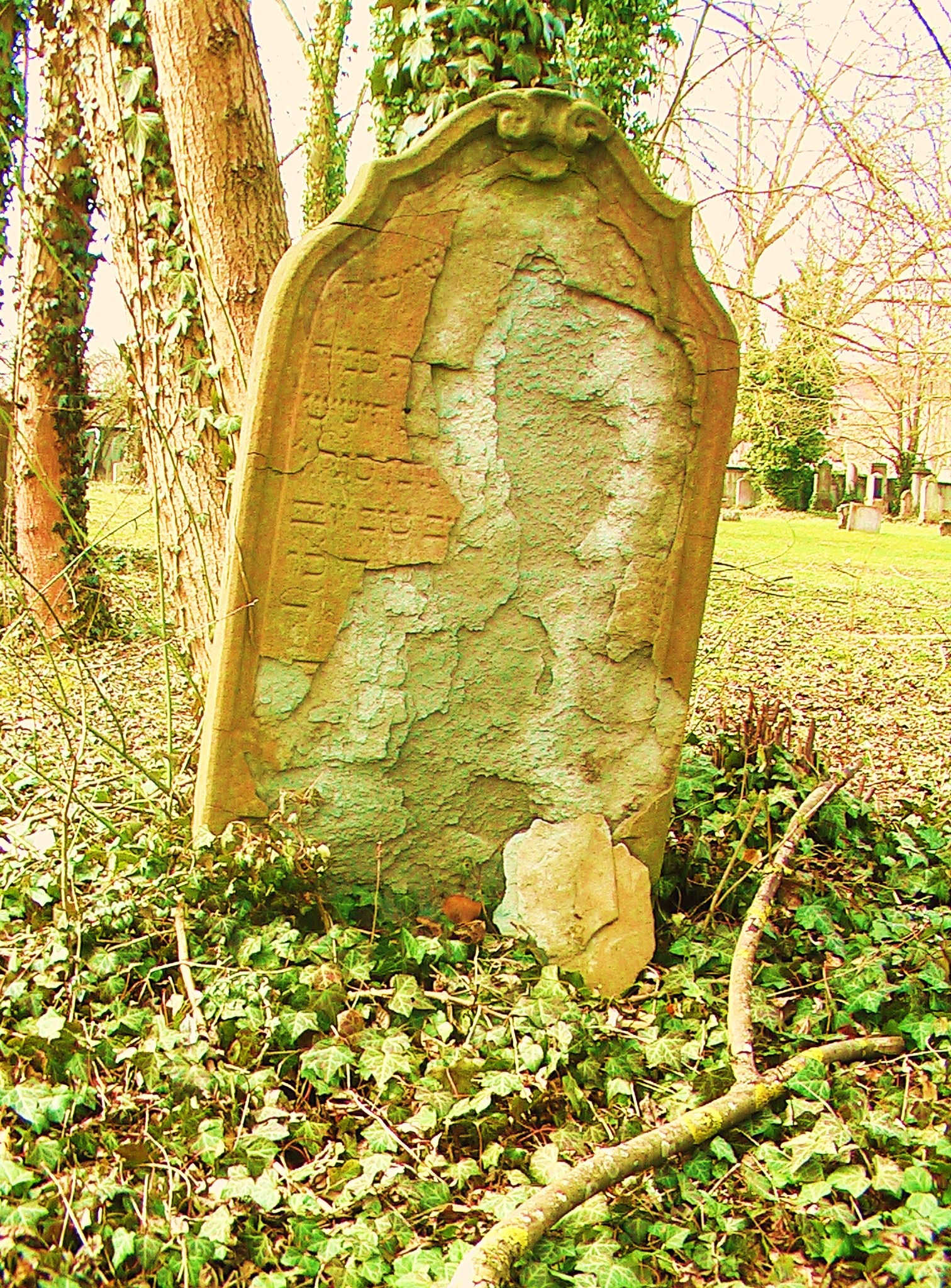 baroque grave marker of Lea Fradel damaged by branch end of march 2009