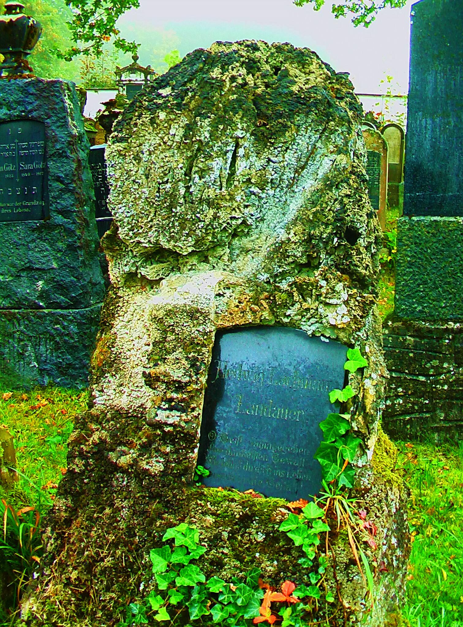 Memorial Hedwig Lachmann wife of Gustav Landauer