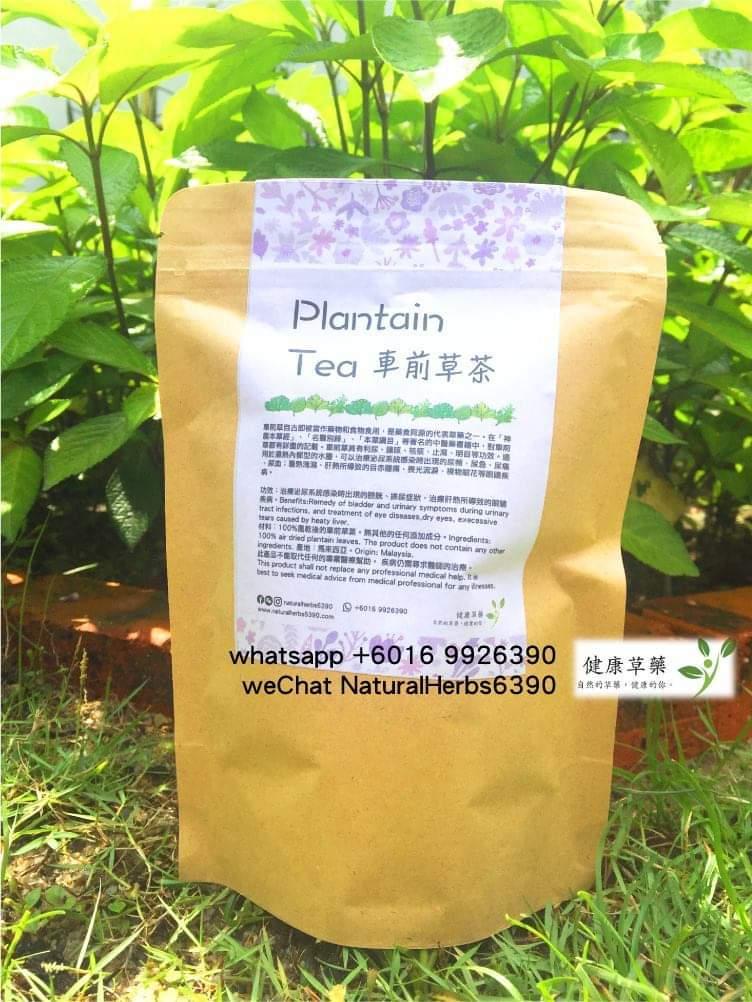 車前草茶 Plantain Tea
