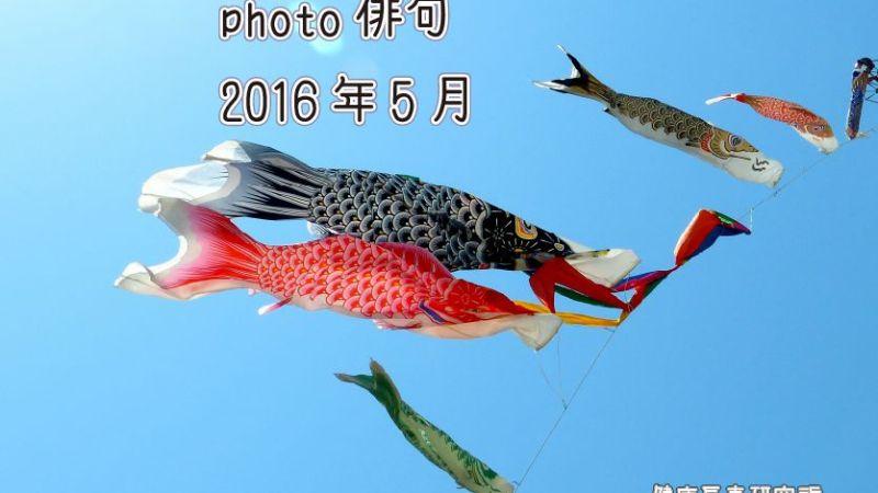 photo俳句2016年9月投稿分