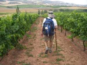 Tim in Rioja ©Jill K H Geoffrion