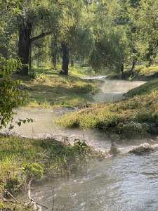 Minnesota Stream with mist by photographer Jill K H Geoffrion