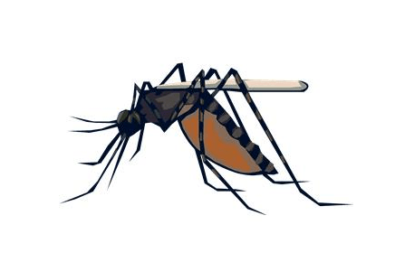 Scary Mosquitoes & West Nile Virus