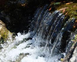 #photo101 water ver 2