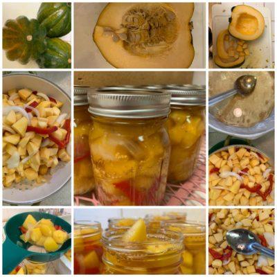 Acorn Squash Pickles