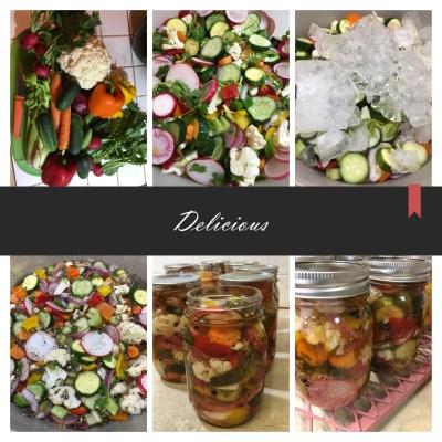 Calico Pickles