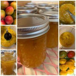 Mango Preserves