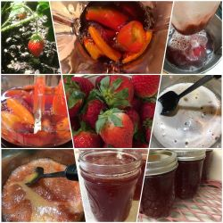 Strawberries and Hot Pepper Jelly
