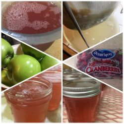 Cranberry Apple Jelly