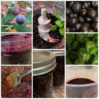 Blueberry Habanero Jam