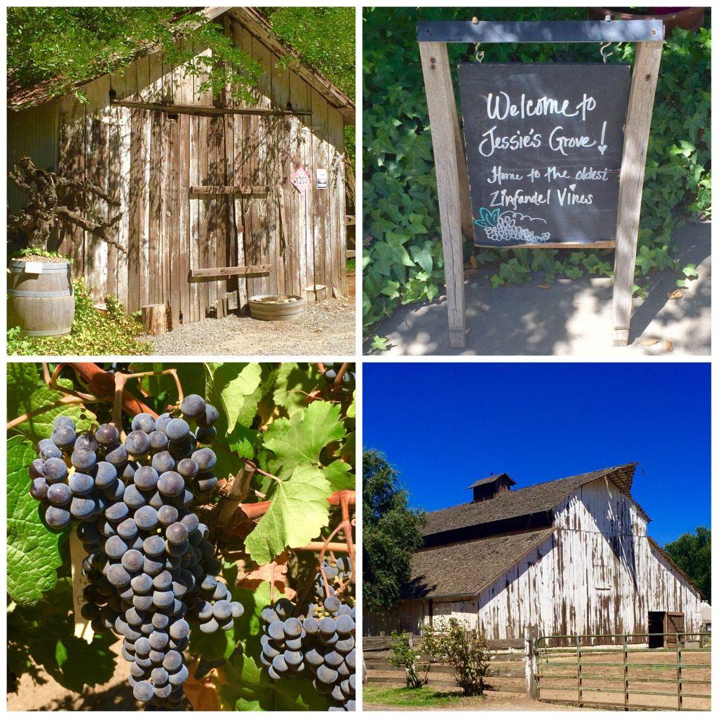 Jessie's Grove Winery