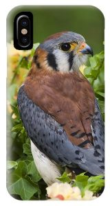 American Kestrel Phone Case