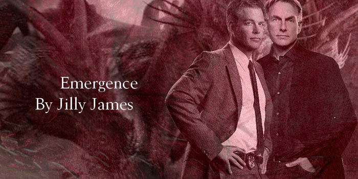 Banner by fanarts_series