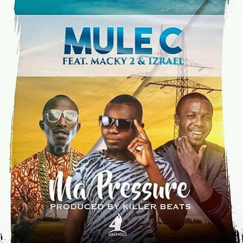 Mule C