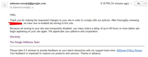 Regarding your Google AdSense Policy Violation Appeal