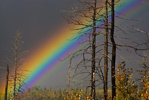 Lake Fire Rainbow