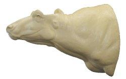 Cape Buffalo, G-1446-66, Straight