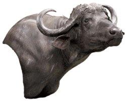 Cape Buffalo Pedestal, Mount by Mike Pebeck
