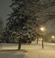 Snowy night view.