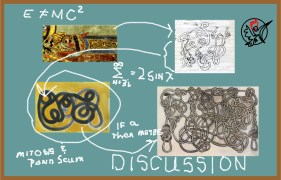 Discussion-Knots