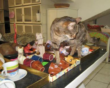 1275 Cat Being Cat