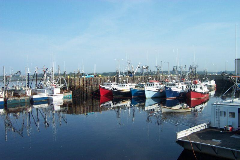 Yarmouth fleet