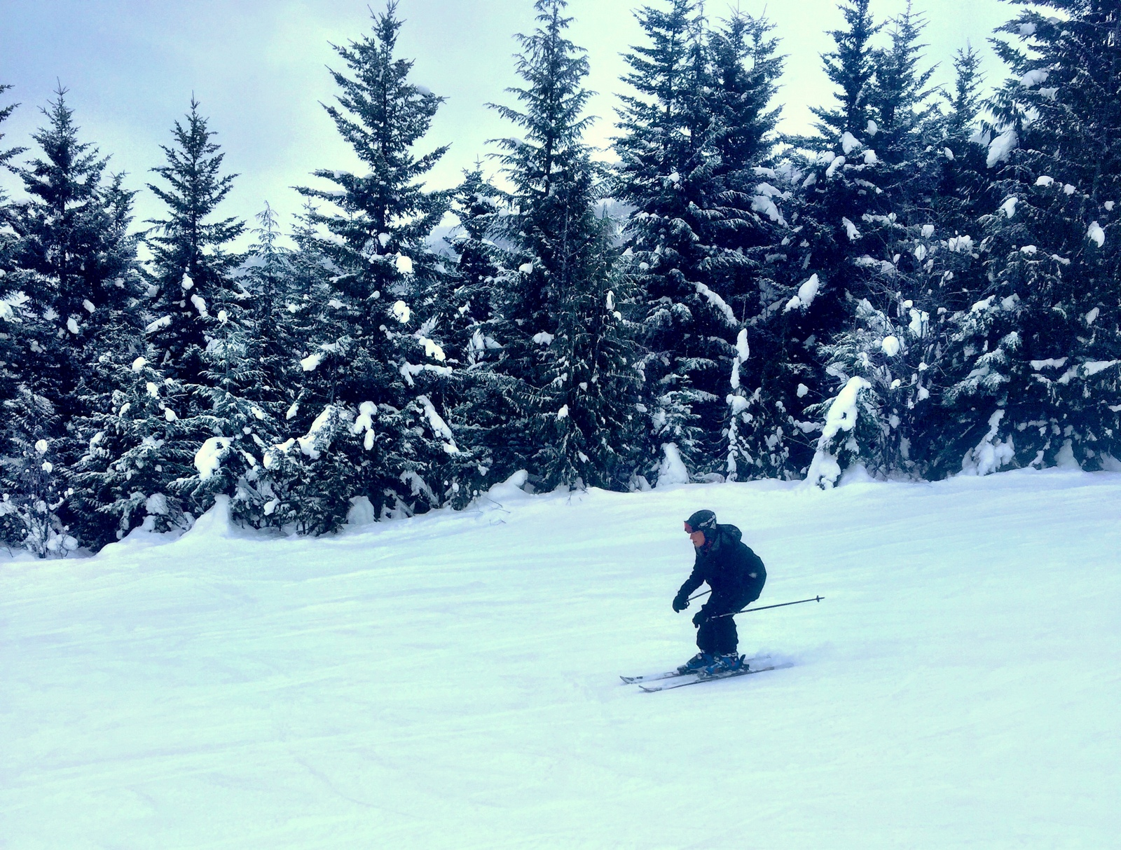 No points for style, but I didn't fall after getting a ski lesson at Whistler-Blackcomb.