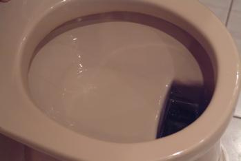 German toilet