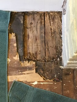 Removed water-damaged subfloor by tub