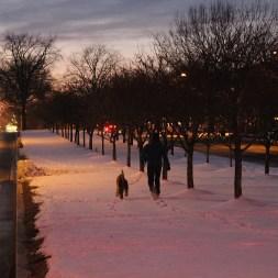 sun-sets-on-dc-snow-day_16378440088_o
