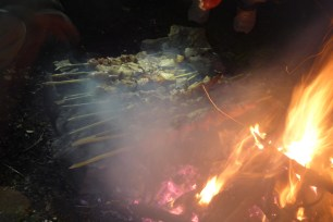 Mtsvadi grilled on the embers