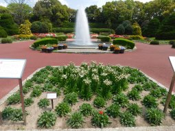 Kyoto botanical garden 019
