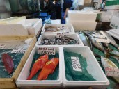 Tokyo Fishmarket & Edo Museum 003