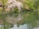Tokyo Garden 012