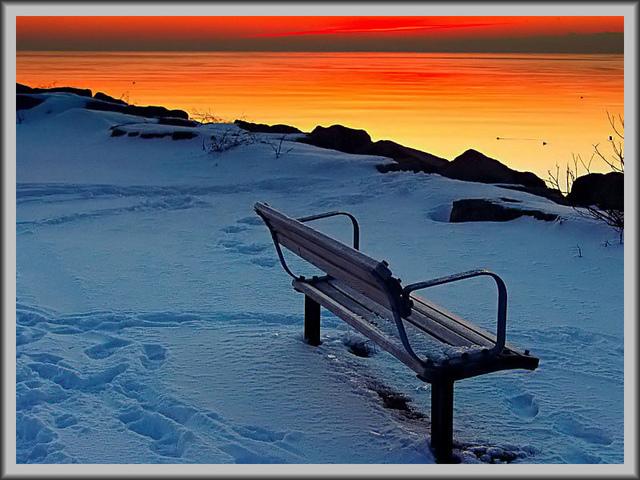 Lonelybench