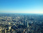 View from the Skytree