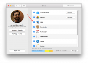 System Preferences showing iCloud Mail