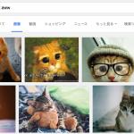 """かわいい動物画像の検索には""""aww""""を使え!"""