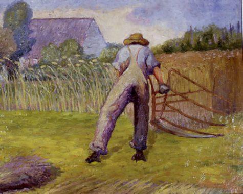 Scything in field