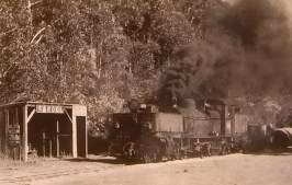 Historical photo of Garratt at Banool Station