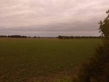 View from campsite at Colac Otway Caravan Park