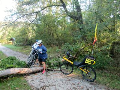 Jim-Schmid's-Bacchetta-Giro-recumbent-on-Torrey-C-Brown-Rail-Trail-MD-10-4-2016