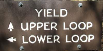 Yield-sign-Lake-James-State-Park-mtn-bike-trail-NC-2-20-2017