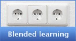 Blended leren